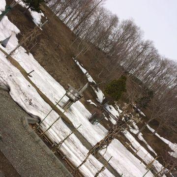 薬草植物園